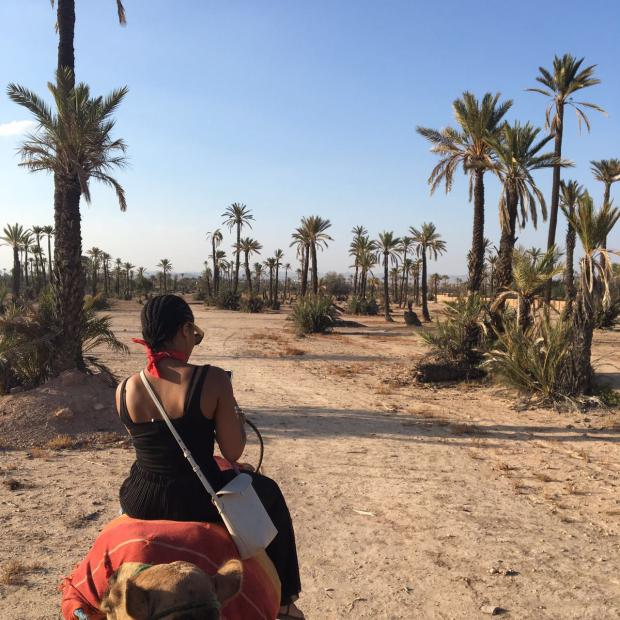 quadbiking in morocco-camel riding in marakech-marrakech-morocco-souk in marrakech-tambollo-nigerian in morocco-africa- medina morocco-birthday in morocco